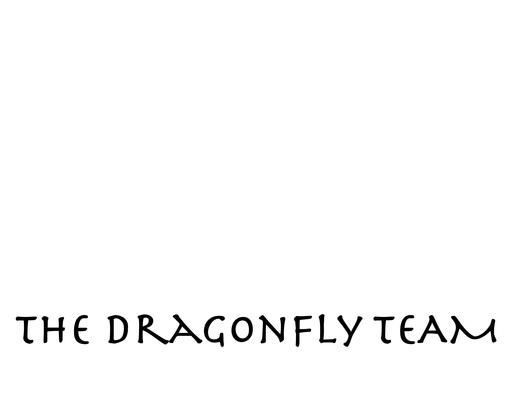 Send a message to The Dragonfly Team